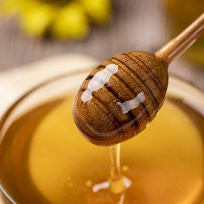 Honey Wild Bee Nature Honey Honey  - Gasfull / Pixabay