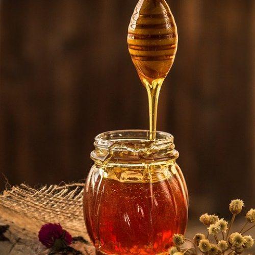 Honey Yellow Beekeeper Nature  - Daria-Yakovleva / Pixabay